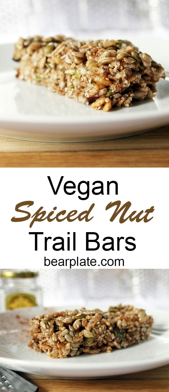 Easy on the go snack!!! Vegan Spiced Nut Bars! #vegan #plantbased #snack #backpacking #recipe #food