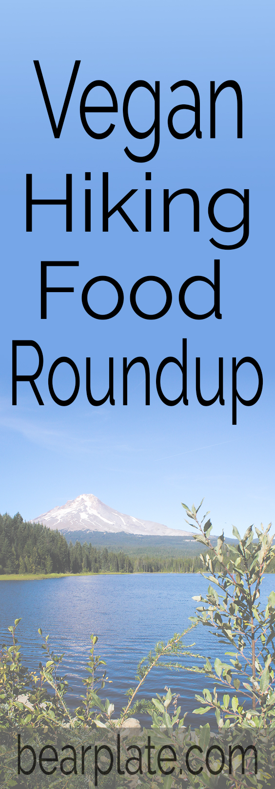 VEGAN HIKING RECIPES! Looking for some snack ideas for your next hiking adventure? Check out this recipe roundup! #vegan #hiking #veganonthetrail #food #recipes