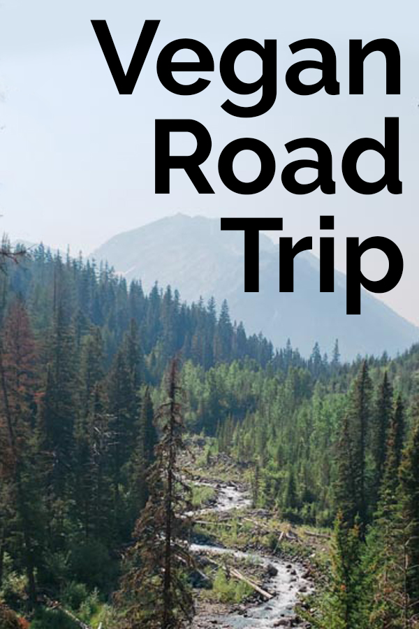 Recipes and tips for your next road trip! #vegan #vacation #bearplate #roadtrip #veganrecipes