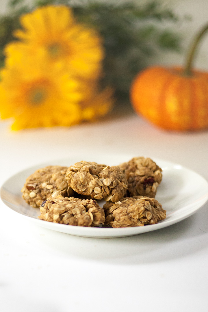 dairy-free fall cranberry oatmeal cookies